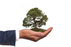 Consapevolezza ambientale