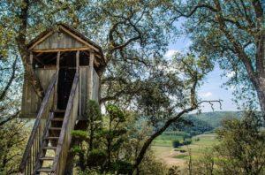 casette-da-giardino-fatte-di-legno-di-qualità